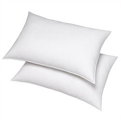 Down Alternative Pillows By Boston Textile